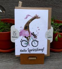 Primoza einpflanzbare Grußkarte Hallo Sprössling