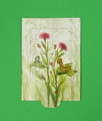Schiebe-Klappkarte Schmetterling
