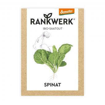 Rankwerk BIO Saatgut Spinat